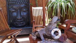 Alma Zen - patio